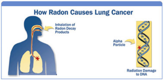 How Radon Causes Lung Cancer - Inhalation of Radon Decay Products